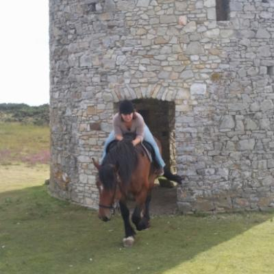 Visite intérieur du moulin à cheval