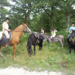 Randonnées  bois de limors à cheval et en ânes