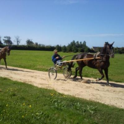 A notre lever pas les fenêtres du château nous voyons  Régis entrainé ses chevaux de course.