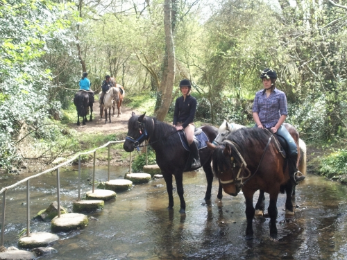 randos équitation chevaux