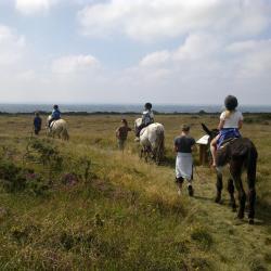 promenade attelée et montée en ânes