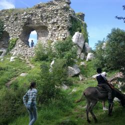 château gallo romain