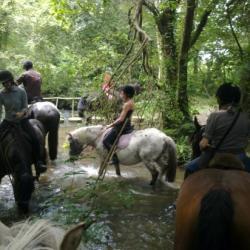 traversée  de rivière Mont Doville