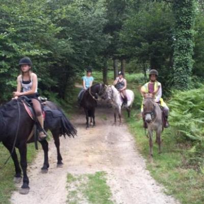 traversée de 4kms du bois de Limors