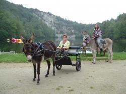 promenade en ânes montés et attelés en libre