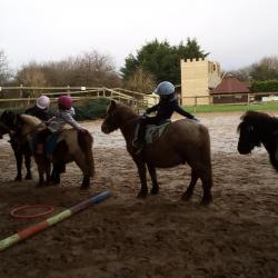 Babys poneys