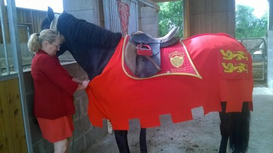 Même les chevaux sont costumés de leur carapaçon