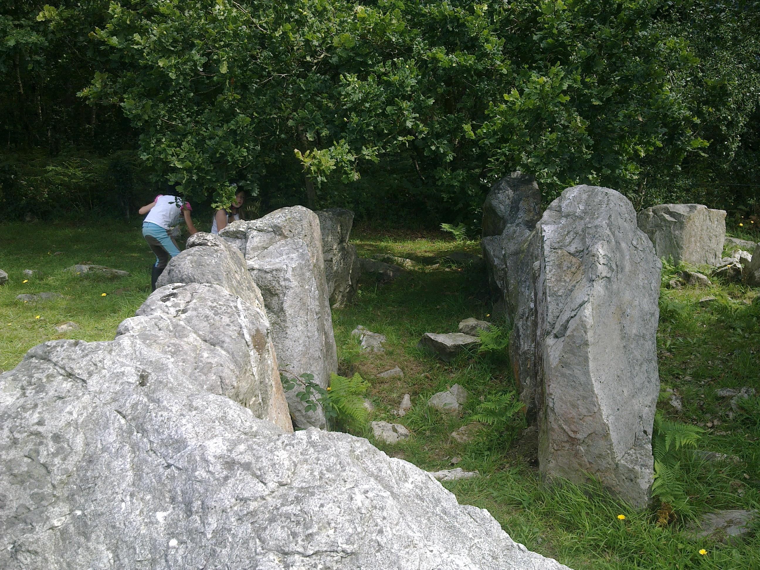 Site mégalithique allée couverte du Mont Castre
