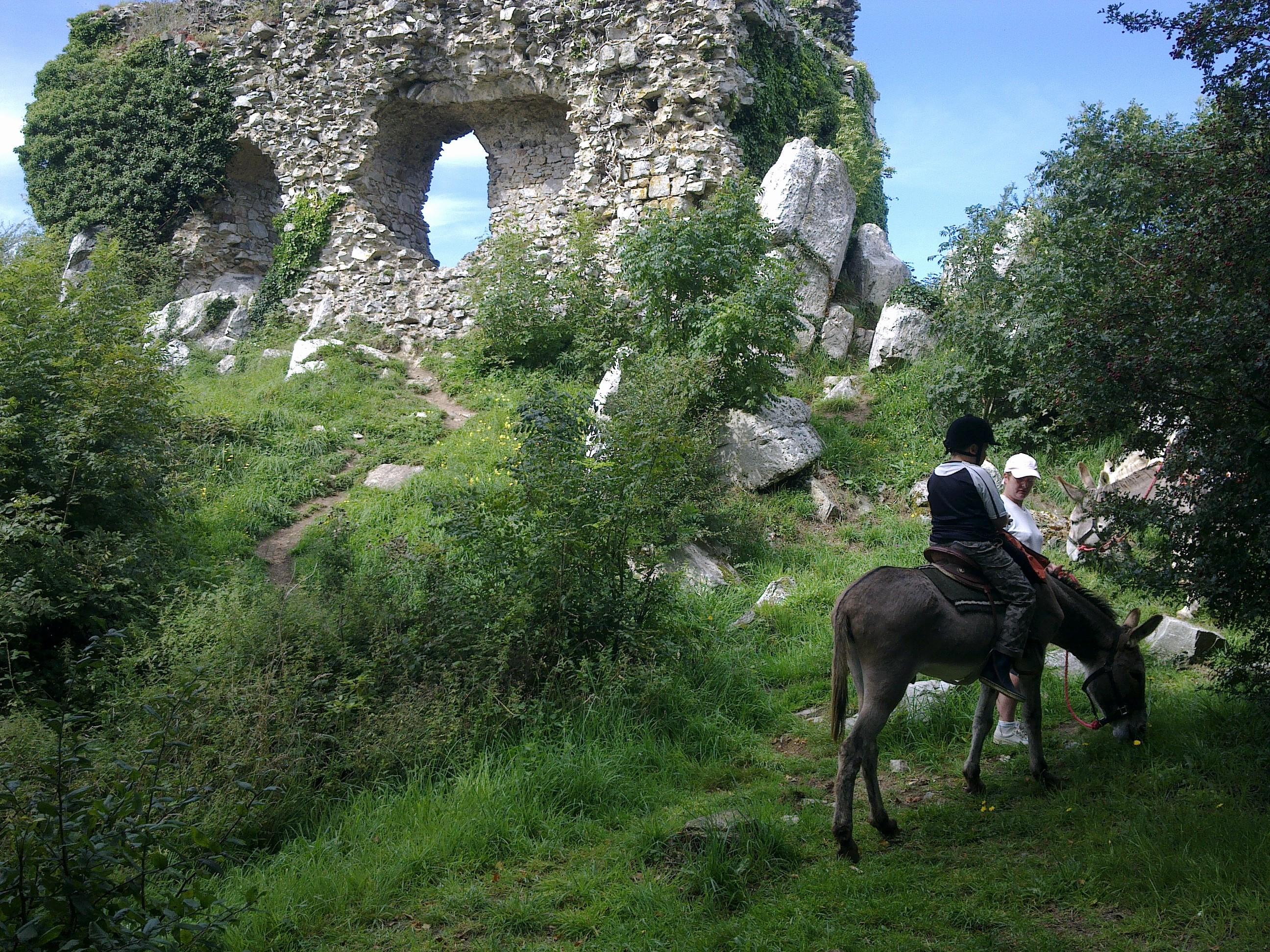 château gallo romain du Mont Castre