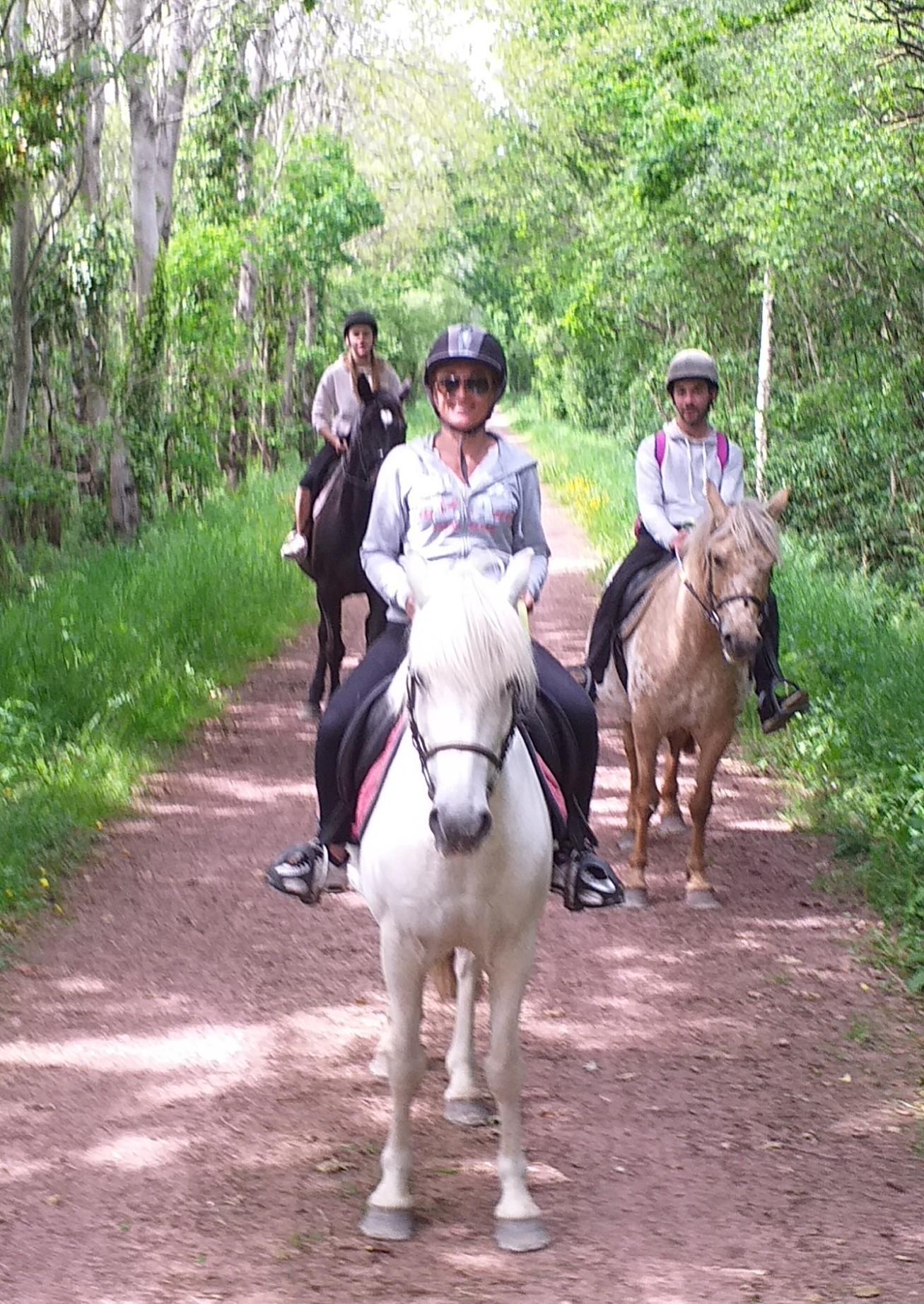 Promenades équestres montées et attelées voies verte