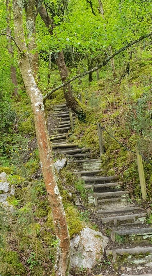 Cet escalier est a prendre uniquement a pied