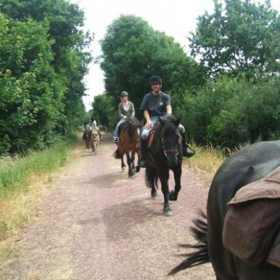 Randonnées à cheval et en ânes sur la voies vertes.