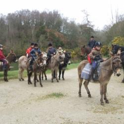 arrêt buvette pour les ânes et chevaux