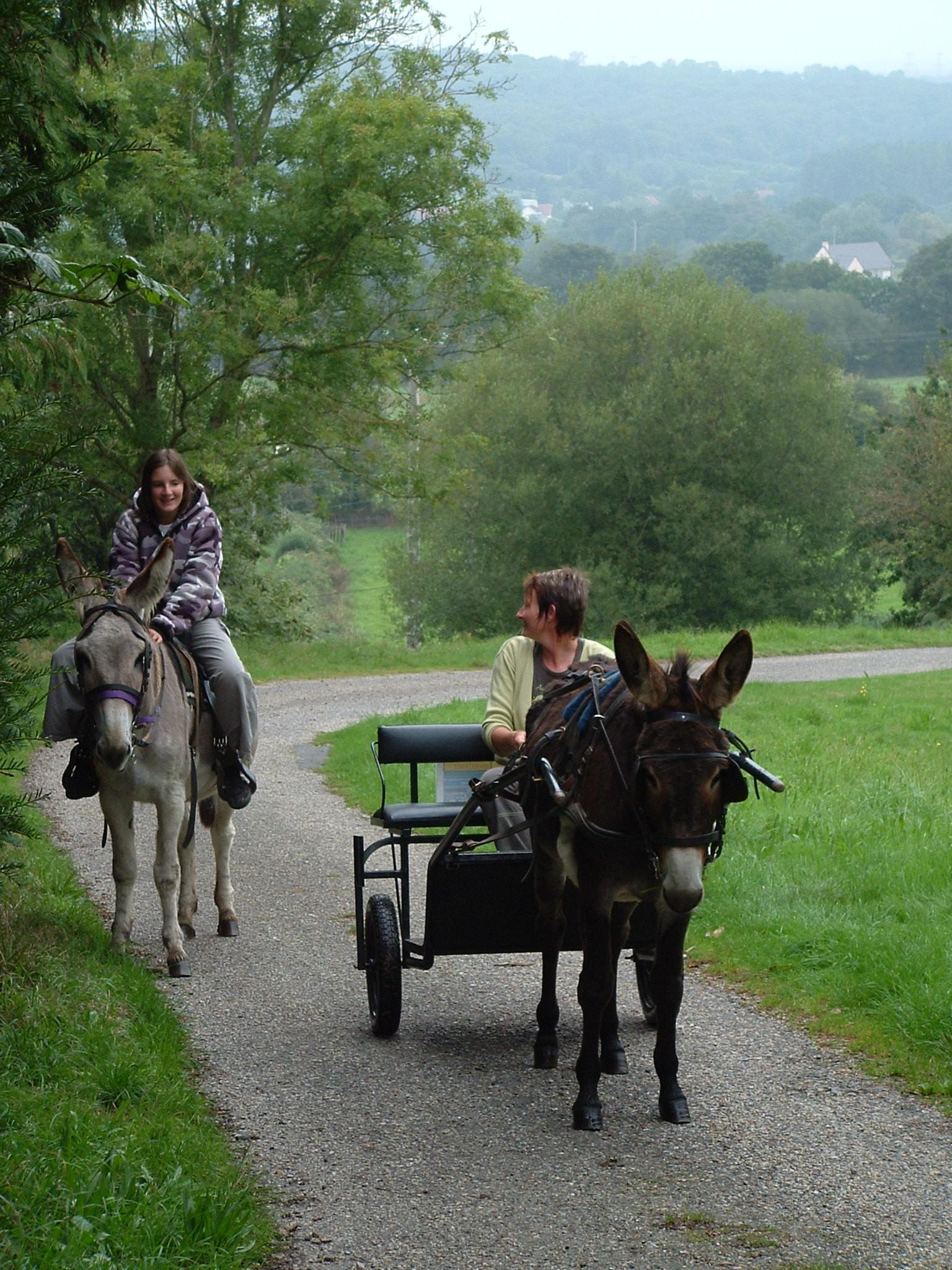 Promenade monté libre Mont Castre journée