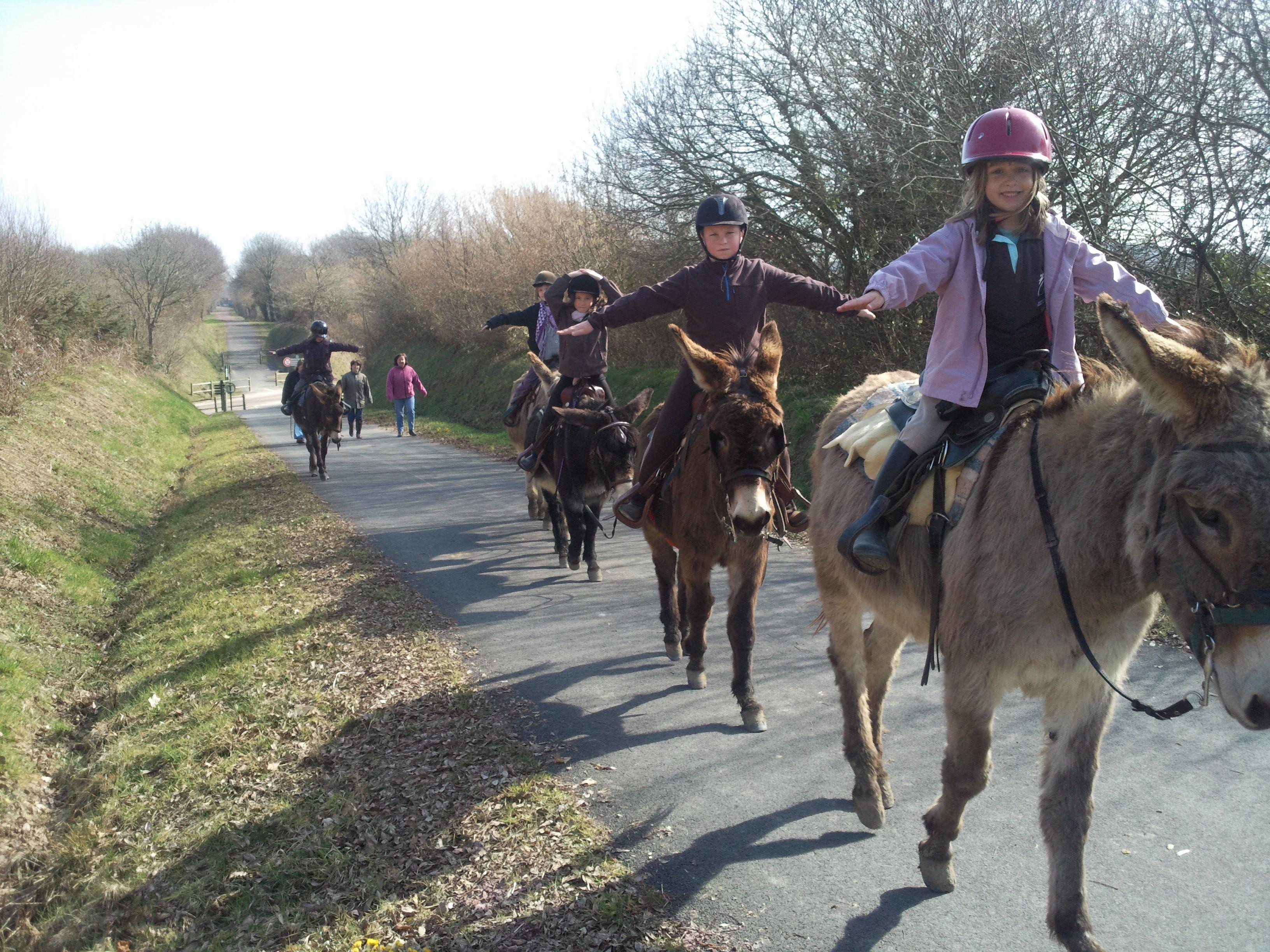 promenade avec ânes montés