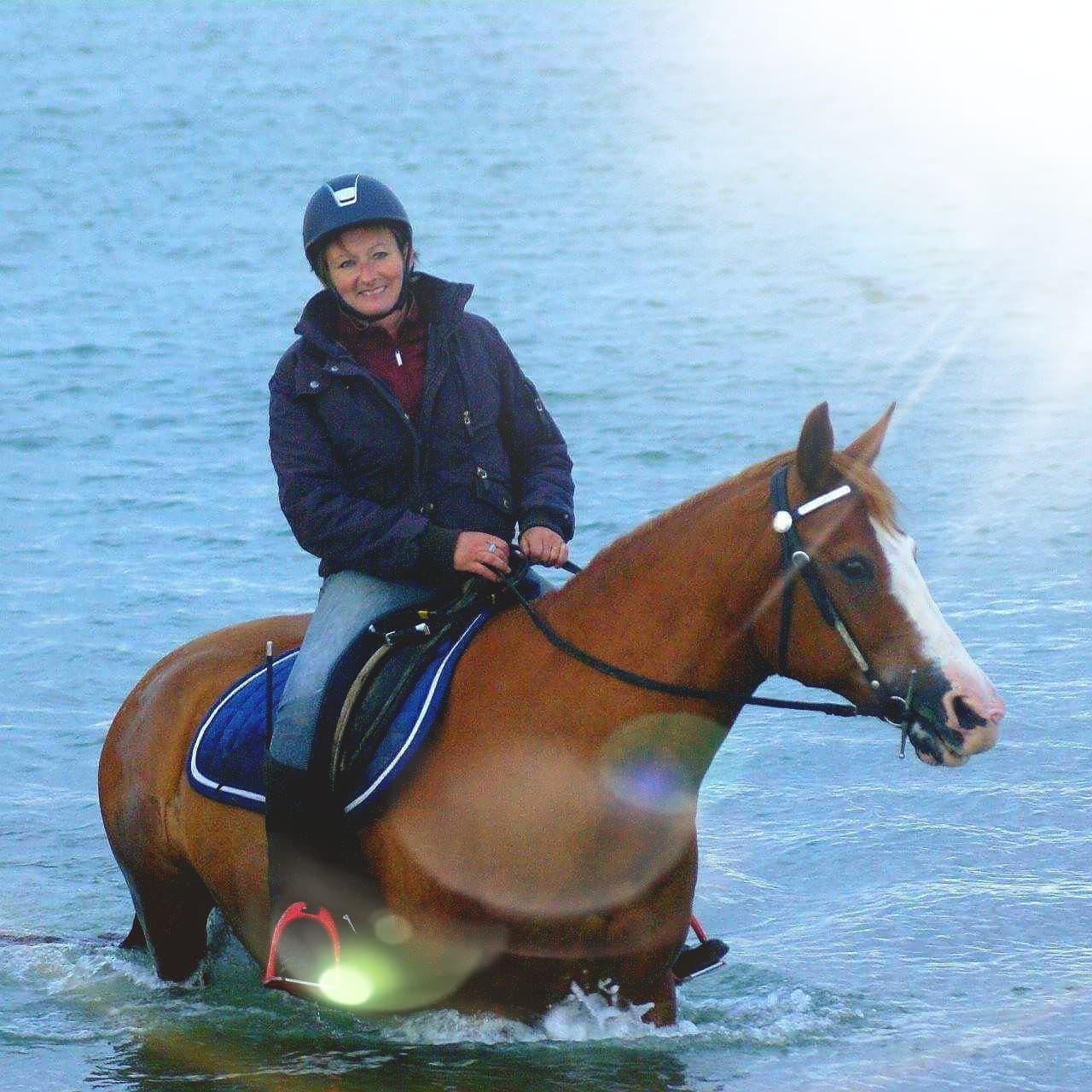 Baignade équestre sur balade mer a cheval