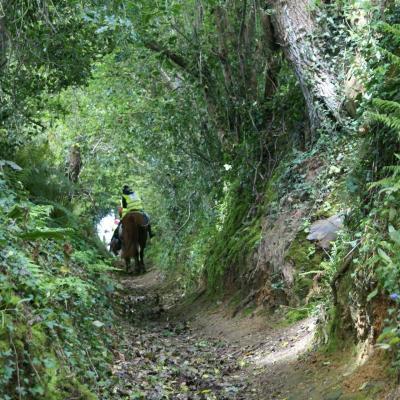chemins creux chargés d'histoire mont de doville