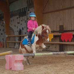 Cours/stages Equitation traditionnels avec Floriane